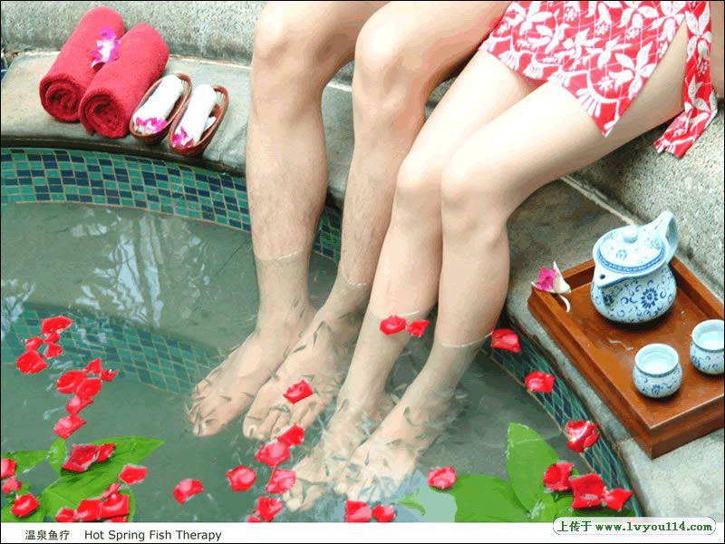 红栌温泉山庄养生鱼疗